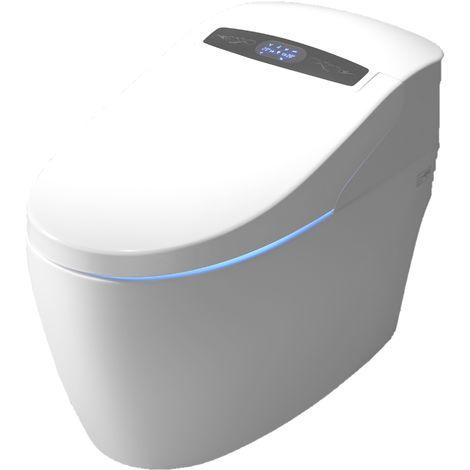 Installation toilettes japonaises Paris